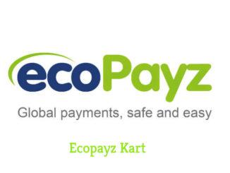 Ecopayz Kart